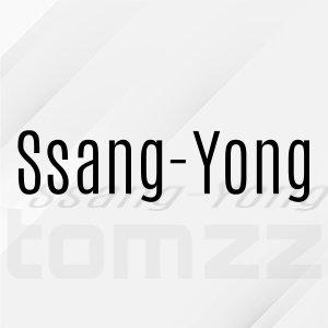 Unser Car HiFi Zubehör für SSANG-YONG....